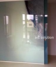 5 стеклянная перегородка с фотопечатью