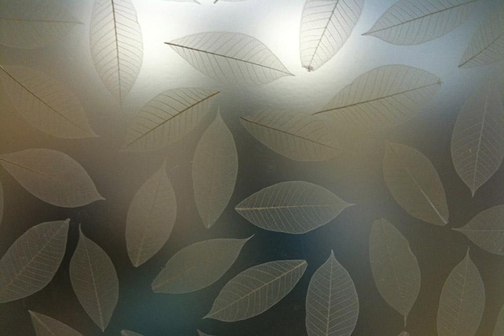 рисунок на матовом бронзовом стекле