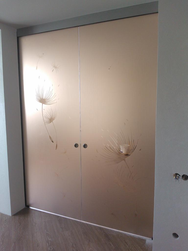 двери рахдвижные стеклянные